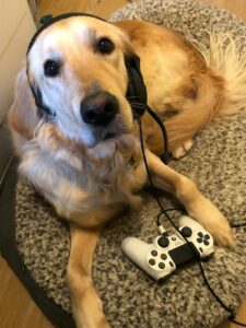 Ava Guide Dog with headset and game controller